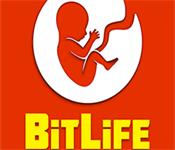 Play BitLife Life Simulator